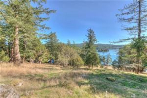 Tiny photo for 1022 Deer Harbor (1022 and 1024) Rd, Orcas Island, WA 98245 (MLS # 1374462)