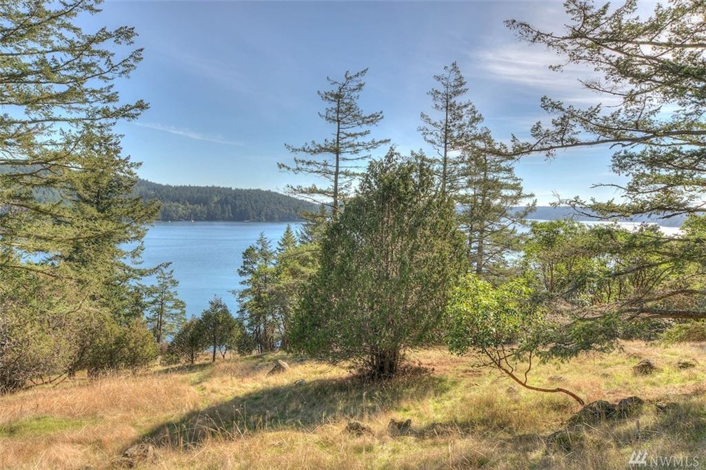 Photo for 1022 Deer Harbor (1022 and 1024) Rd, Orcas Island, WA 98245 (MLS # 1374462)