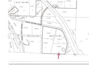 Photo of 50228 Sauk Store Road Lot 3, Concrete, WA 98237 (MLS # 1831466)