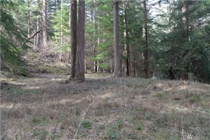 Photo of 441 Roehl's Hill, Orcas Island, WA 98279 (MLS # 1414477)