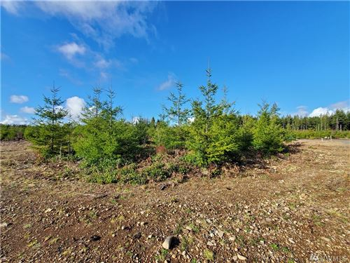 Photo of 9999 Lot 3 Hennings SP, Forks, WA 98331 (MLS # 1559490)