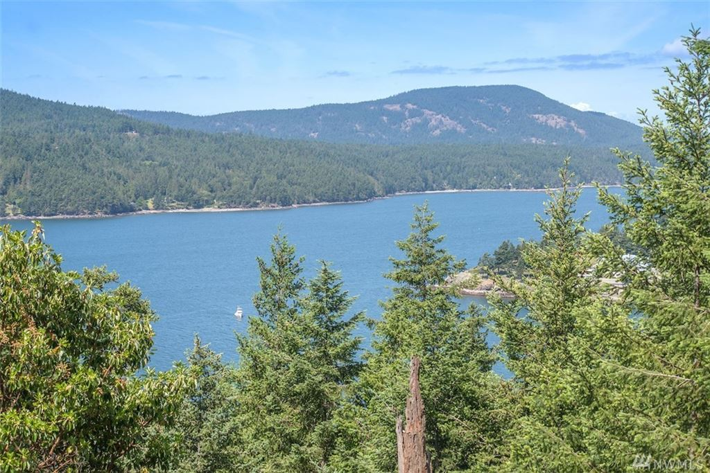 Photo for 1074 Palisades Dr, Orcas Island, WA 98245 (MLS # 1447490)