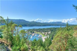 Photo of 299 Geiser Wy, Orcas Island, WA 98245 (MLS # 1509496)