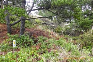 Photo of 5 (Lot 5) K Lane, Ocean Park, WA 98640 (MLS # 1411498)