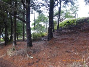Tiny photo for 5 (Lot 5) K Lane, Ocean Park, WA 98640 (MLS # 1411498)