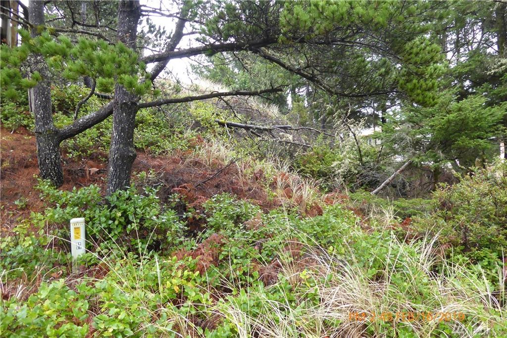 Photo for 5 (Lot 5) K Lane, Ocean Park, WA 98640 (MLS # 1411498)