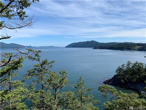 Tiny photo for 0 Pioneer Hill Rd, Orcas Island, WA 98279 (MLS # 1491508)