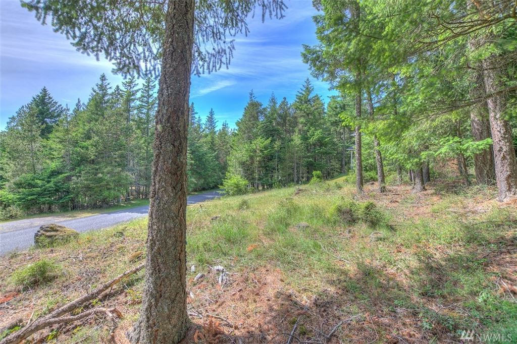 Photo for 500 Discovery Wy, Orcas Island, WA 98245 (MLS # 1471508)