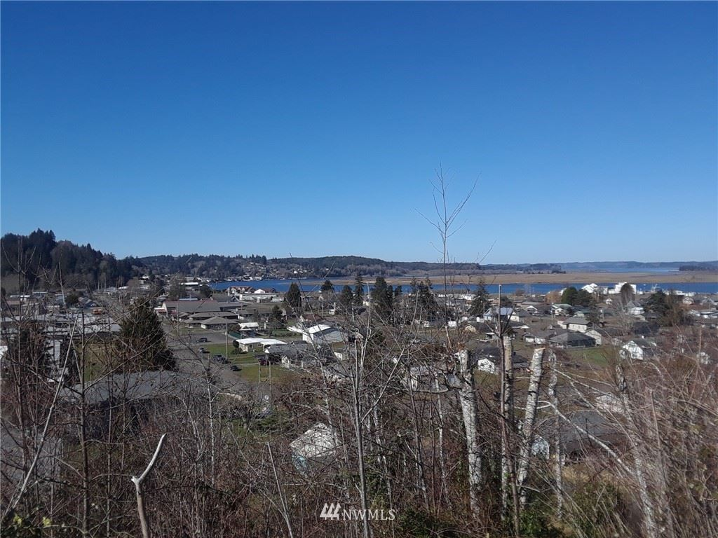 Photo of 0 E Cowlitz Street, South Bend, WA 98586 (MLS # 1654509)