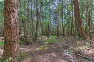 Photo of 1 Palisades Dr, Orcas Island, WA 98245 (MLS # 1471510)