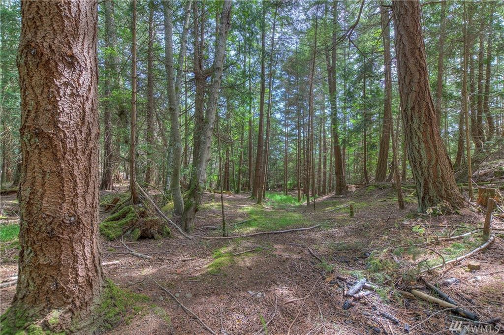 Photo for 1 Palisades Dr, Orcas Island, WA 98245 (MLS # 1471510)