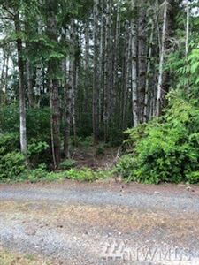 Photo of 92 E Marine View Dr, Allyn, WA 98524 (MLS # 1477511)