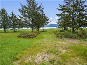 Tiny photo for 13160 Teal Lane, Long Beach, WA 98631 (MLS # 1356513)