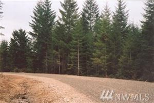 Photo of 0 xxxx E Benson Ridge Rd Lot: 4, Shelton, WA 98584 (MLS # 1274529)