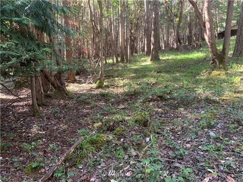 Photo of 58 Marine Lane, Stuart Island, WA 98250 (MLS # 1766531)