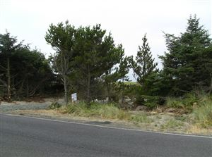Tiny photo for 33311 G St, Ocean Park, WA 98640 (MLS # 578568)