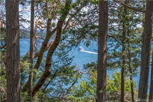 Photo of 1570 Spring Point Rd, Orcas Island, WA 98245 (MLS # 1468570)