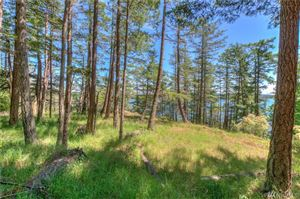 Tiny photo for 1570 Spring Point Rd, Orcas Island, WA 98245 (MLS # 1468570)