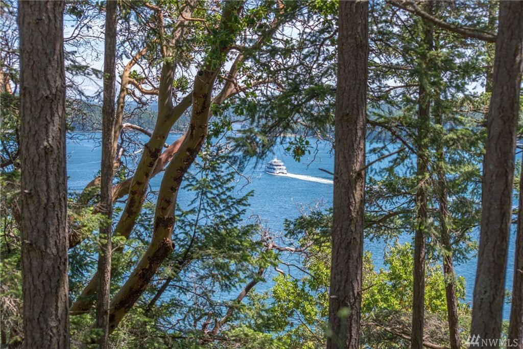 Photo for 1570 Spring Point Rd, Orcas Island, WA 98245 (MLS # 1468570)