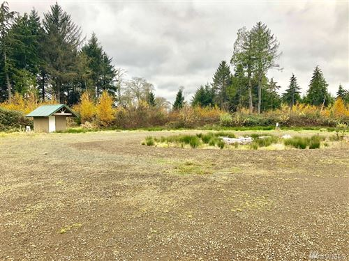 Photo of 4201 67th Place, Long Beach, WA 98631 (MLS # 1541571)