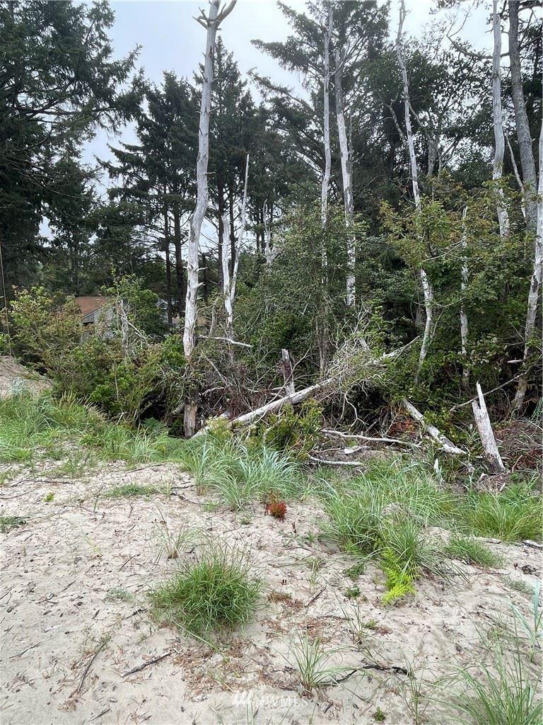 Photo of 32202 J Place, Ocean Park, WA 98640 (MLS # 1824578)