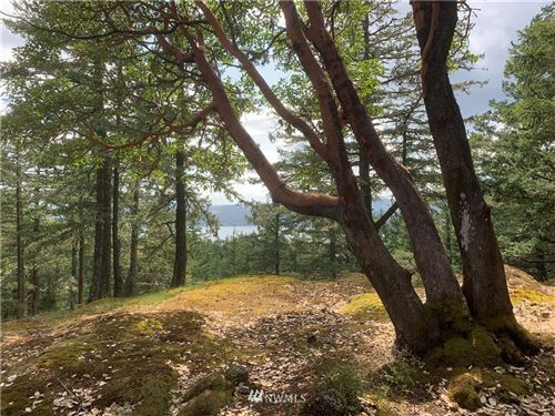Tiny photo for 200 Purdue Lake Rd, Orcas Island, WA 98245 (MLS # 1490608)