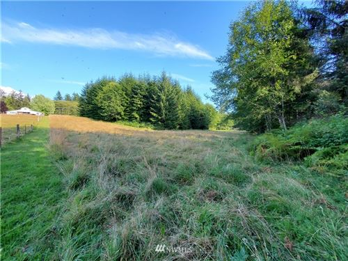Photo of 9999 Highway 101 Parcel B, Port Angeles, WA 98305 (MLS # 1643619)