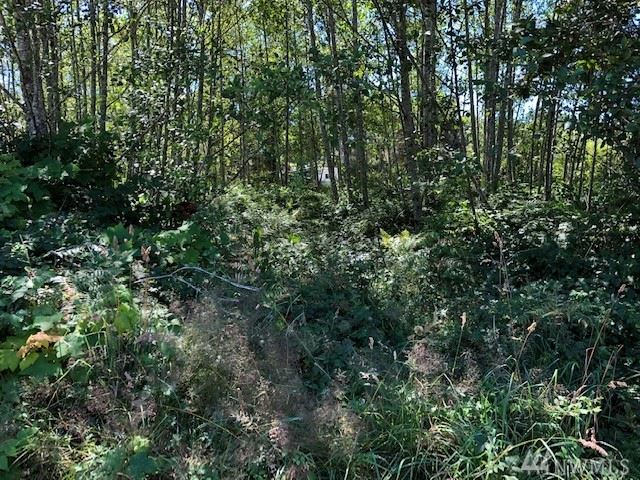 Photo of 2112 304th Place, Ocean Park, WA 98640 (MLS # 1499622)