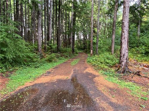 Photo of 4188 Mary Clark Road, Beaver, WA 98305 (MLS # 1843624)
