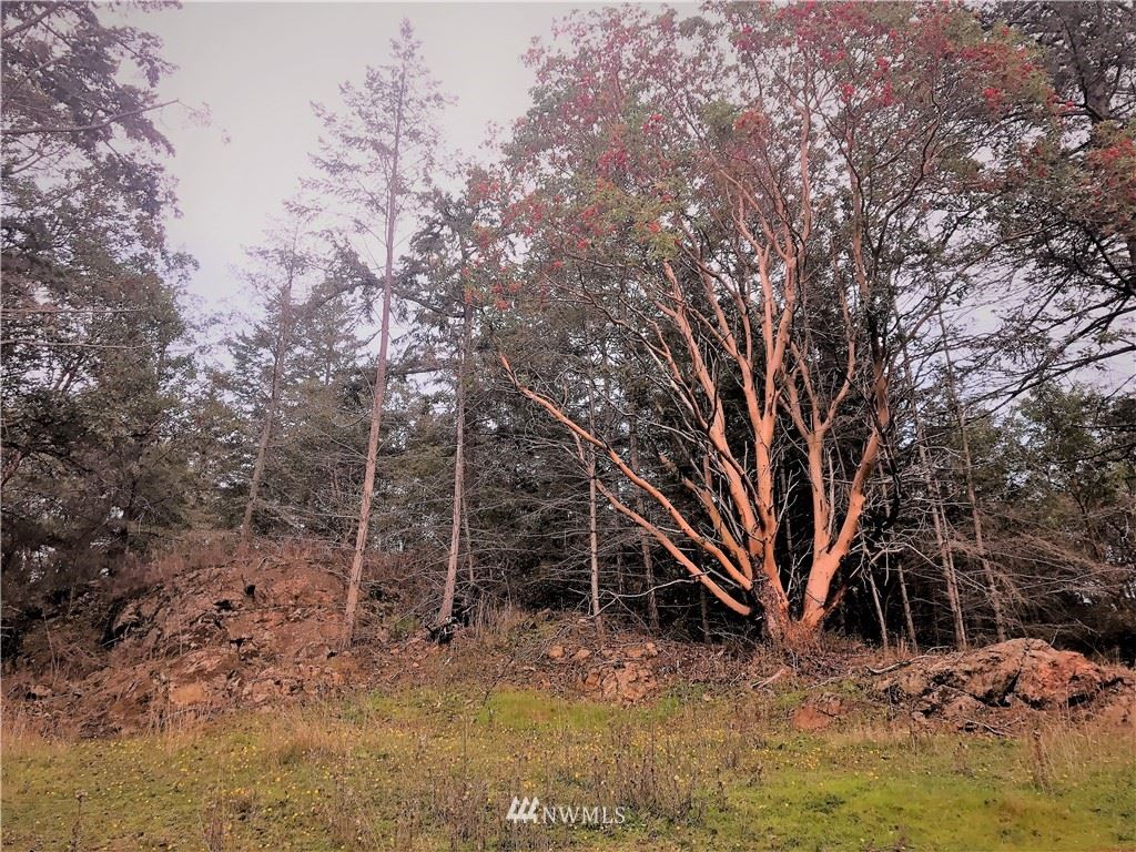 Photo for 15 Prospect Rd, San Juan Island, WA 98250 (MLS # 1381634)