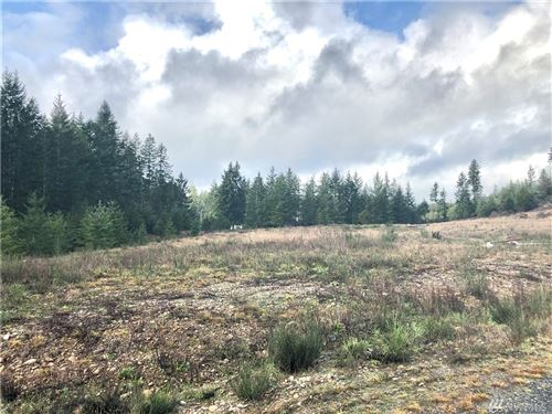 Photo of 2 Northern Sky Dr, Shelton, WA 98584 (MLS # 1557643)