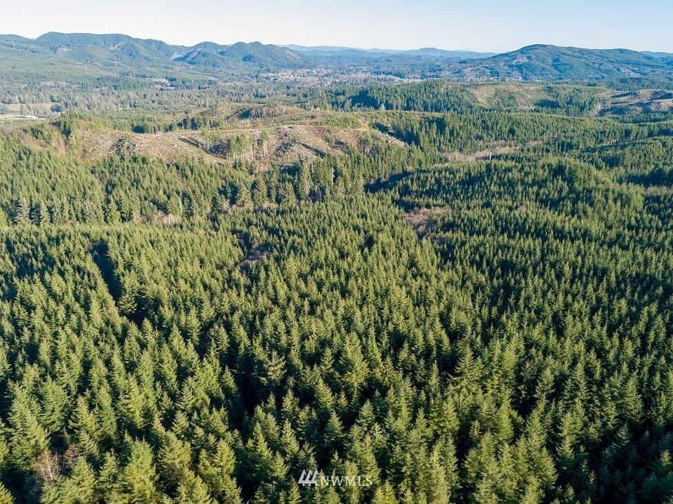 Photo of 2 Dell Creek Mainline, Naselle, WA 98638 (MLS # 1543643)