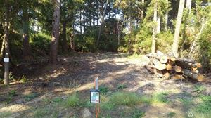 Photo of 32301 K Place, Ocean Park, WA 98640 (MLS # 1351652)