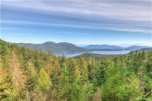 Photo of 811 Spring Hill Rd, Orcas Island, WA 98245 (MLS # 1390659)