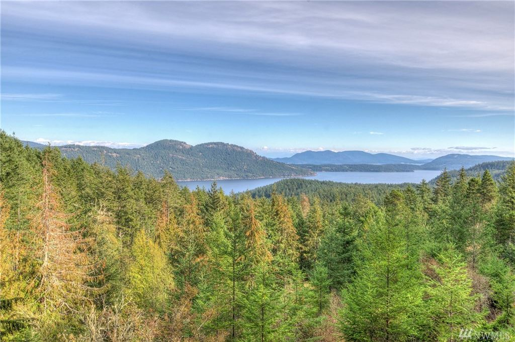 Photo for 811 Spring Hill Rd, Orcas Island, WA 98245 (MLS # 1390659)