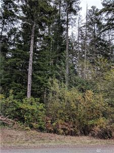 Photo of 284 NE Tahuya Blacksmith Rd, Belfair, WA 98528 (MLS # 1391663)