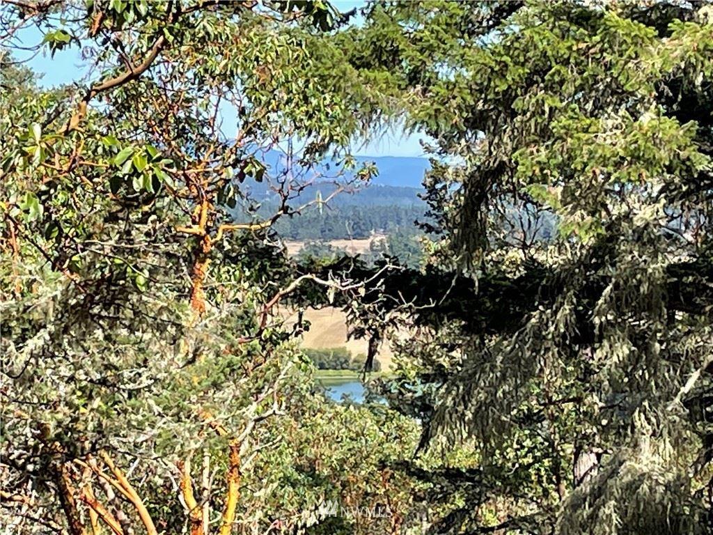 Photo for 7 Prospect Rd, San Juan Island, WA 98250 (MLS # 1380666)