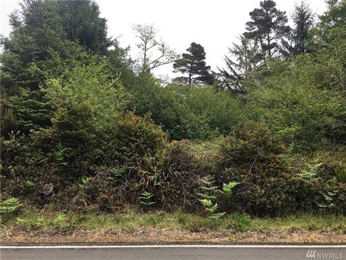 Photo of 35460 Stackpole Rd, Oysterville, WA 98641 (MLS # 1608676)