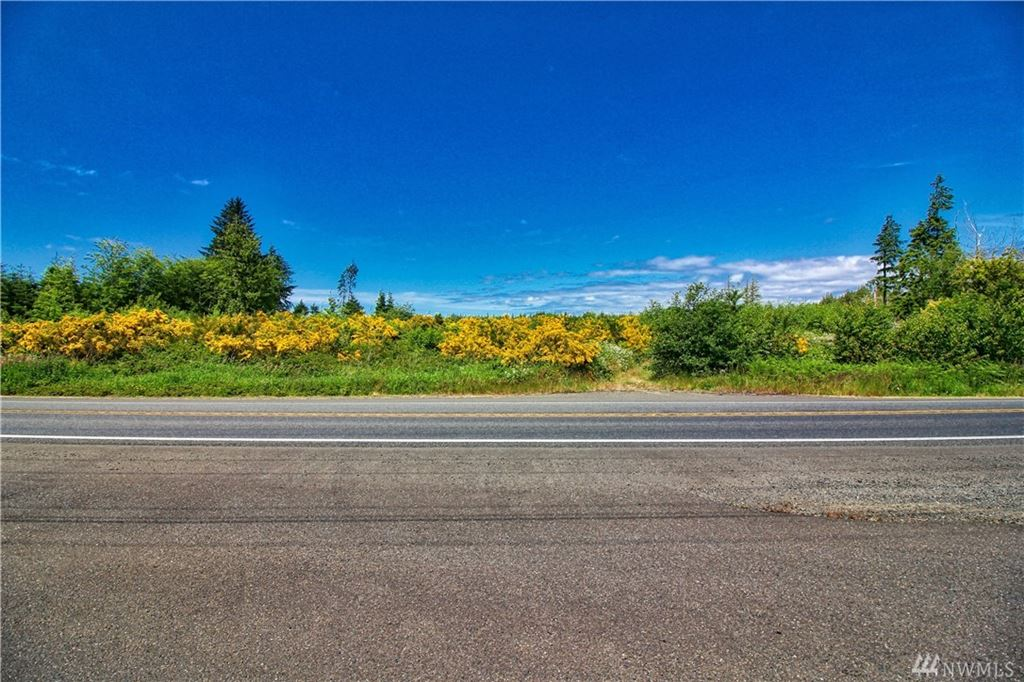 Photo of 9999 State Route 105, Ocosta, WA 98520 (MLS # 1481677)