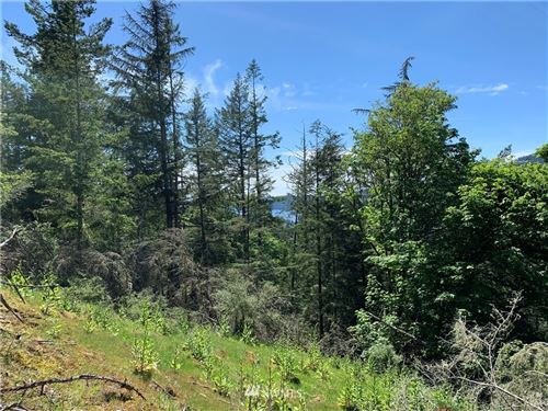 Photo of 810 Pioneer Hill Rd Lot: 2, Orcas Island, WA 98279 (MLS # 1346685)