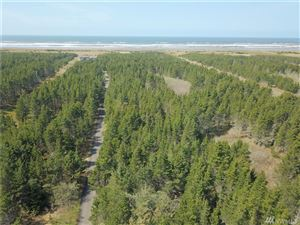 Photo of 0 43rd Place, Seaview, WA 98644 (MLS # 1437685)
