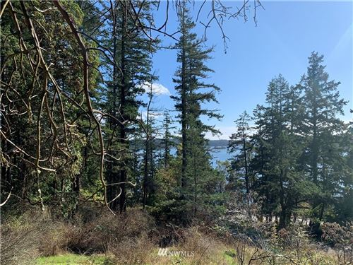 Photo of 49 Killebrew Lake Road, Orcas Island, WA 98280 (MLS # 1676691)