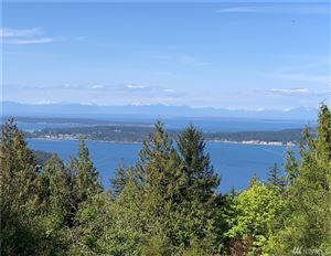 Photo of 701 Spring Hill, Orcas Island, WA 98245 (MLS # 1453692)