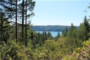 Photo of 0 NE Hurd Rd, Belfair, WA 98529 (MLS # 1497702)