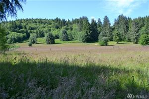Photo of 9999 Parcel A Grant Rd, Beaver, WA 98305 (MLS # 1479703)