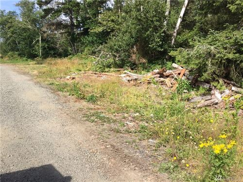 Photo of 2473 V Lane, Ocean Park, WA 98640 (MLS # 1618749)