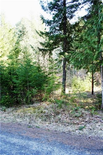 Photo of 534 Cannon Rd, Packwood, WA 98361 (MLS # 1582759)