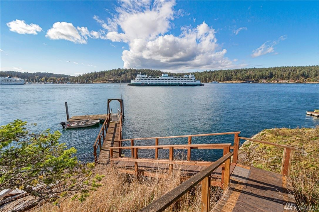 45 Brown Island, Friday Harbor, WA 98250 - #: 1541763