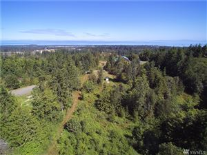 Photo of 9999 Chasewood Dr, Port Angeles, WA 98363 (MLS # 1495766)