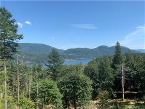 Photo of 171 Spring Hill Rd, Orcas Island, WA 98245 (MLS # 1512778)